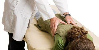 Chiropractic patient receiving a lumbar spine adjustment.